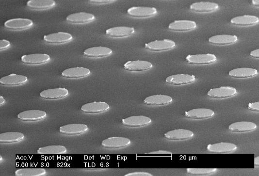 SEM image of nano-structured QCLs