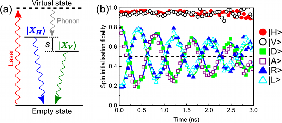 Excitation scheme and spin-state fidelity