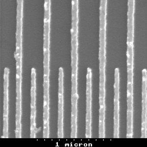 SEM image of a SAW transducer